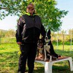 éducateur canin Montpellier Hérault